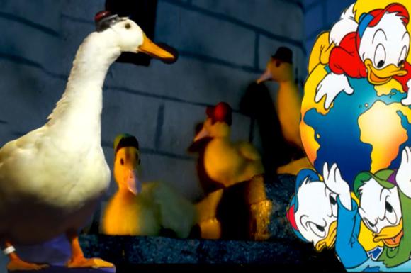 disney-duck-tales-real-video-recreate-hilarious-cute_2014-09-09_07-07-31