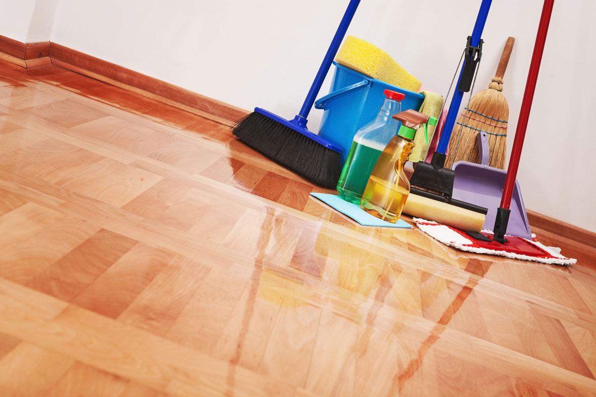 house_cleaning-MorandoNosEstadosUnidos_toad